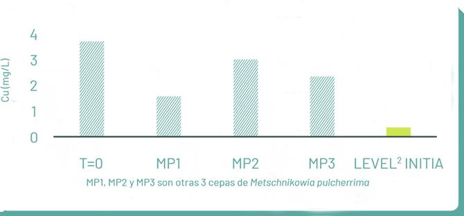 Graphe 03