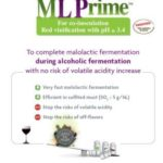 ML Prime™: New applications for this selected wine bacteria (Lactobacillus plantarum) with a very high and fast malolactic activity