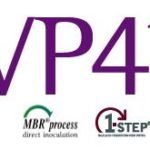 VP41: Wine Bacteria for Malolactic Fermentation to Produce Young and Fresh Wines