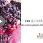 Relazioni Lallemand ad Enoforum 2019, Laktia: Gestire la freschezza acidica mediante preinoculo con uno specifico ceppo non-Saccharomyces