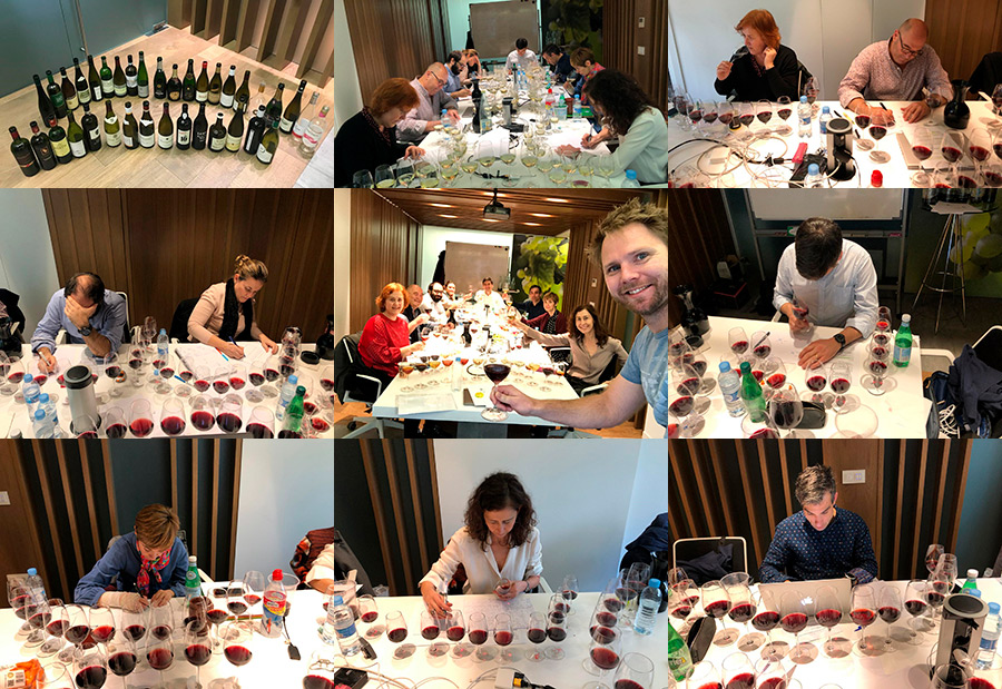Master of wine student group