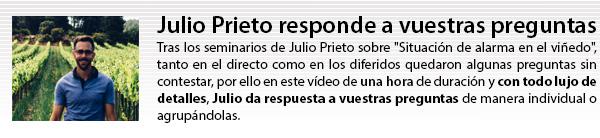 Julio Prieto responde a vuestras preguntas del seminario: Situación de alarma en el viñedo