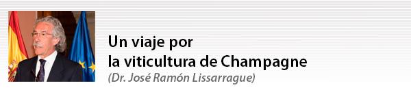 Un viaje por la viticultura de Champagne con José Ramón Lissarrague