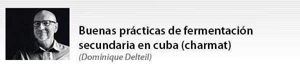 Buenas prácticas de fermentación secundaria en cuba (charmat)