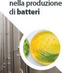 Specializzati nella produzione di batteri: scopri le nostre tre gamme