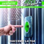 Protocollo semplificato per la ripresa degli arresti di fermentazione con Uvaferm 43 RESTART™