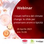 WEBINAR: I rosati nell'era del climate change: le sfide in vigneto per preservare aromi e tipicità