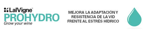 Lalvigne Prohydro mejora la adaptacion y resistencia de la vid frente al estres hidrico