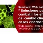 """«Soluciones para combatir los efectos del cambio climático en los viñedos""""."""
